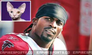 michael-vick-animal-fights-police-sphynx-hairless-cats-new-york-jets