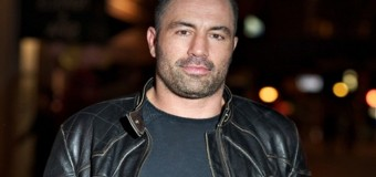 Joe Rogan To Fight In The UFC